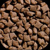 AKTIV hund kibbles 400x400.jpg