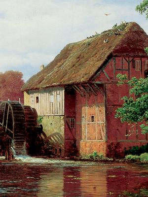 Slider - Aller vandmolle - 800x581